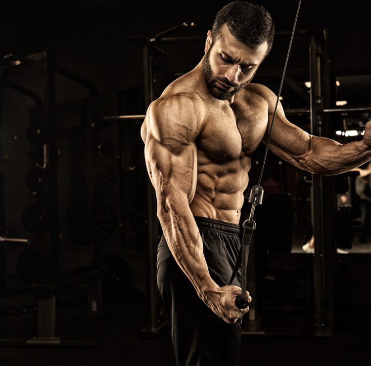 GoldNutrition | Como Ganhar Massa Muscular | Hipertrofia Muscular